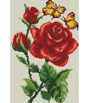 Троянда та метелики